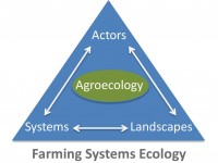 senior-resources-agricultural-ecological-ecologic